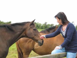 Treating neck, back and hip pain in Horses